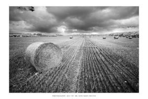 Straw bale study - II by DimensionSeven