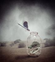 In The Jar by crilleb50