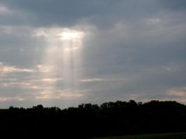 A Ray of Sunshine by photowizard