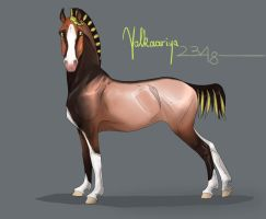 2348 ES Valkaariya by NorthEast-Stables