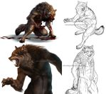 Werewolf sketch and speedpaint dump by Atan