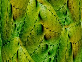 Dragon Skins by Thelma1