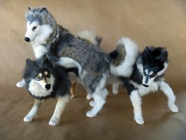 Malamute Guardians Playing by AnyaBoz
