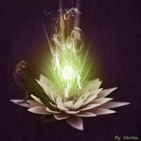 The Crown and the Lotus by duzetdaram