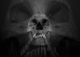 Camera Trick with Skull 02 by Aleuranthropy