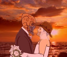 Plo Koon x Dave Filoni Wedding by thehaydenclone