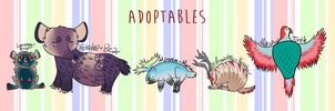 hybrid adopts - LOWERED PRICES by coat