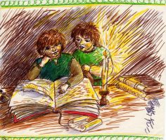 Frodo and Sam by natoth
