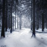 Winter Poem II by MarcoHeisler