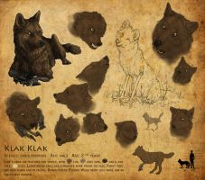 Reference Sheet: Klak Klak by KlakKlak