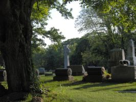 Cemetery stock 3 by bloodykisses56-stock