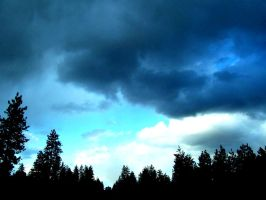 Pacific North West Sky by Momofbjl