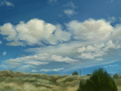Open sky by kcimaginary