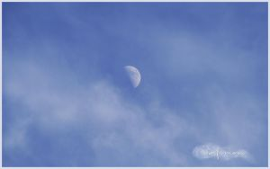 Half Moon by samweissb