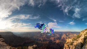 Royal Sisters Flying Over The Grand Canyon by Macgrubor