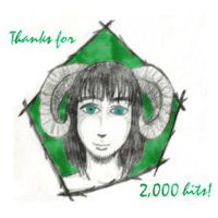 2000 by diviana