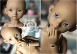 Denuded by Lavandula-BJD