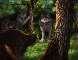 Meeting the New pack by Tidma