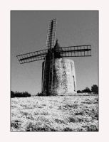 Le Moulin by contrarymary