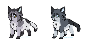 Customs for Sugars-Kittens by LizzysAdopts