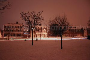winters night by PammyDsPhotography