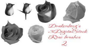 Rose brush pack 2 by 3DigitalStock
