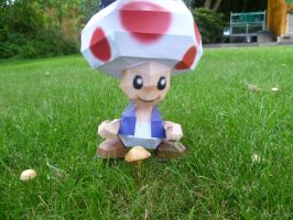 toad by epikachu