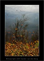 Autumny Reflection by sandervandenberg