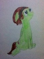 Oh look! A Pony Picture I'm Almost Proud of! by Spirit-ual