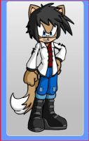 My Brother as a Sonic Character by cartoonfan22