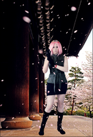 Haruno Sakura - The war begins by TemeSasu
