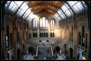 natural history museum 224 by poseidonsimons-s