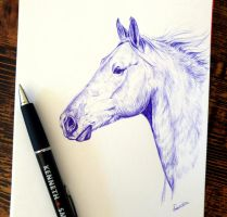 Pen sketch by Tinesdierportretten
