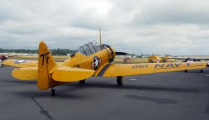North American SNJ-5 by shelbs2