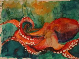 Octopus by lenischoen