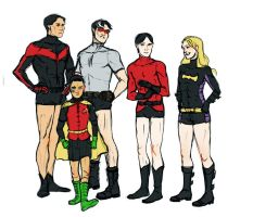 Robins by lihsa