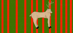 Reindeer by twotooto