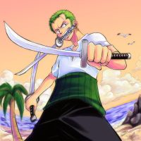 Zoro podre by lince