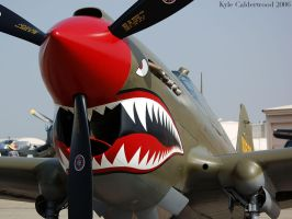 P-40 Nose by Photobeast
