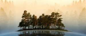 Misty Lake II by RobinHedberg