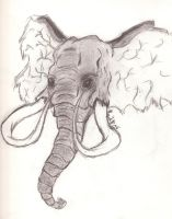 .:African Elephant:. No Ref. by Wolfbeauty