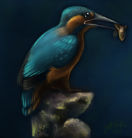 The Kingfisher by bawky