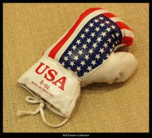 USA made in pakistan by canibull