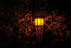 Light during the dark night by Janszoon