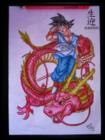 Goku and the Dragon by LucasTsilva