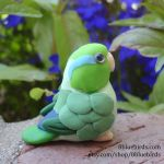 Celestial Parrotlet - back view by The-Wandering-Bird