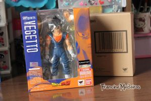 Sh Figuarts Vegetto by theredprincess