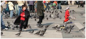 boy and pigeon by mR-StIck