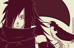 Falconer Madara by Hatake-Flor