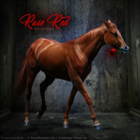 HEE Horse Avatar - Rose Red by art-equine